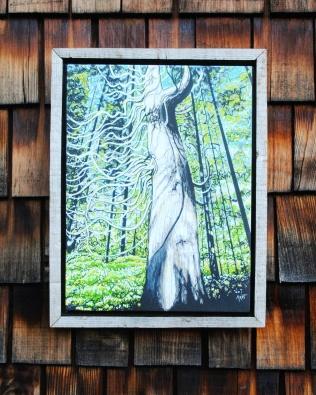Douglas Fir Driftwood Frame $60